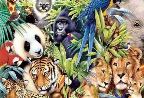 Δεν μπορεί να υπάρξει τέλειος πολιτισμός, μέχρι ο άνθρωπος να συνειδητοποιήσει ότι τα δικαιώματα κάθε πλάσματος είναι τόσο ιερά όσο τα δικά του.. 4 Οκτωβρίου, Παγκόσμια Ημέρα Ζώων, με ίσα δικαιώματα μεταξύ Ανθρώπων και Ζώων❤ 🐢🐦🐝🐒🐭🐞🐶🐘🐱🐎🐨 #animalsday #weloveanimals